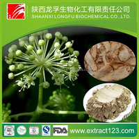 Hot Sale Herbal Product dong quai powder extract/dong quai extract ligustilide/dong quai extract powder