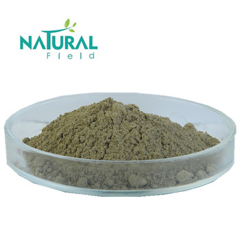 Bset Cnidium Extract with Natural Field
