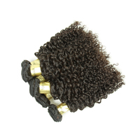 3Pcs/Lot Virgin Human 8A Cheaper Curly Wave Hot Selling Brazilian Hair