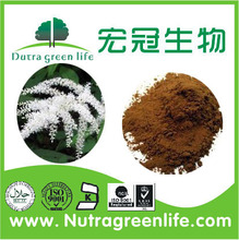 Natural Plant Black Cohosh Extract 5%Triterpine Saponins