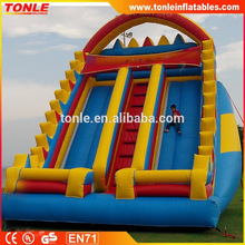 best selling cheap Jumbo Inflatable Rock Slide for sale, giant adult inflatable slide hire rental