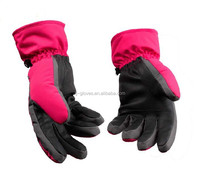 Wholesale custom reinforced finger winter outdoor motorcycle driving/ ski glove