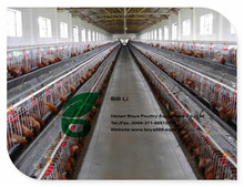 2017 For Africa poultry cages design layer chicken cages