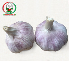 China cheap garlic/fresh garlic/natural garlic for wholesale