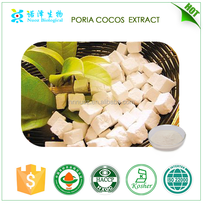 chinese herbal energy drink powder poria cocos extract 5%