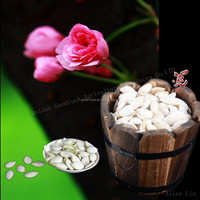 China Origin Best Quality Factory Supplying Snow White Raw Pumpkin Seeds in Shell