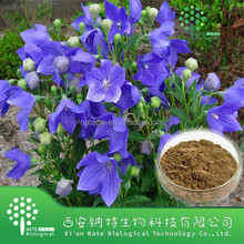 GMP factory high quality balloon flower extract powder/Bellflower powder