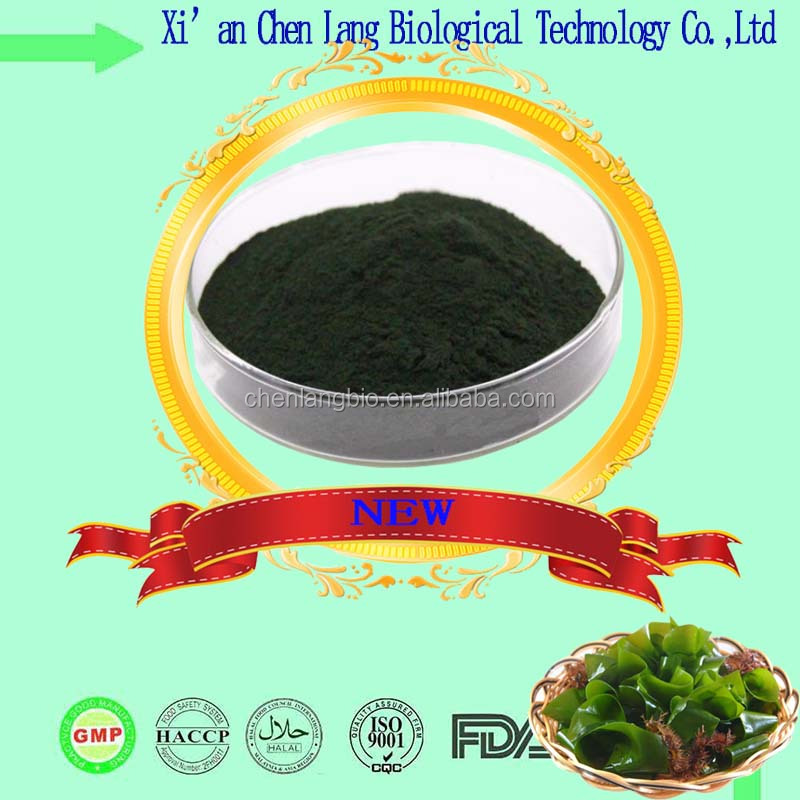 Pure Nature New Products Organic Spirulina Powder With High Quality spirulina powder