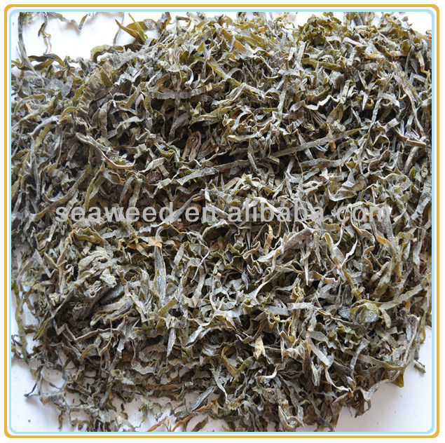 Export to Russia and Ukraine dried shredded laminaria seaweed