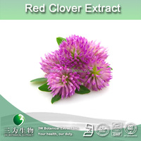 Pure red clover P.E,trifolium pratense extract