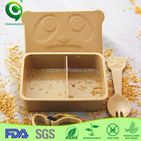 organic lunch box container for food with dividers