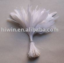 Stripped Coque Feather