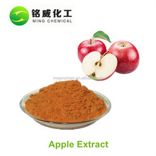 Organic good natural grade apple extract powder for skin whitening