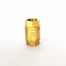 Spring Return Valve Brass Titan Check Valve