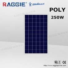 RAGGIE High qualty 250w Polycrystalline Solar PV Panel For Roof In Stock