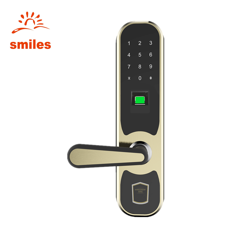 Hot! Best Biometric Fingerprint Keypad Security Door Lock With Remote Control For Cottage