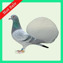 Pigeon Racing Medicine 10% Amoxicillin Powder for Fowl