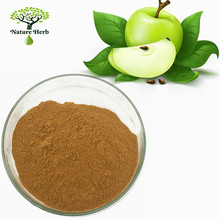 Apple Extract Powder, dried apple powder, apple juice concentrate powder
