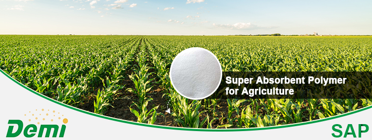 New Arrival Polymer Super Absorbent Polymer Sap Hydrogel  for plants