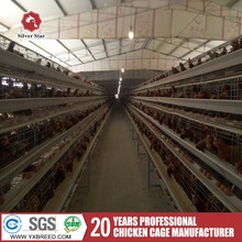 New Design poultry layer chicken rearing cage for farm