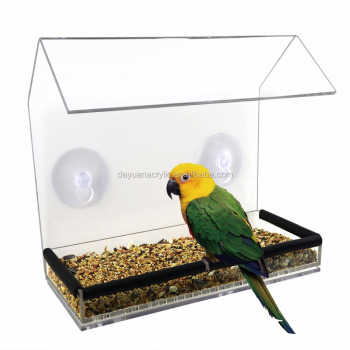 Bird Feeder Acrylic Material With Suctions Cups Factory Price