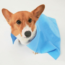 New design small size PVA suede printed water absorbent pet bathing and drying towel