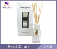 Eco-Friendly Wholesale reed diffuser Air freshener dispenser fragrance oil