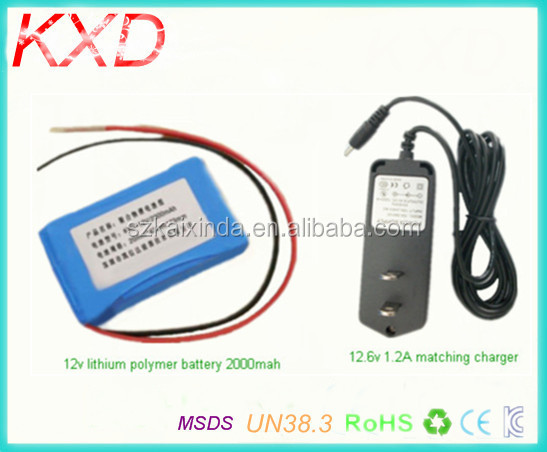Small cheap price Li polymer 2000mah 12v rechargeable battery