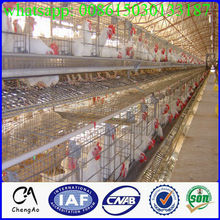 Hote sale metal bird cage /group of bird cage for breeding