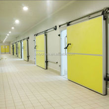 Cold storage room with PU Insulation panels for vegetables,fish,meat