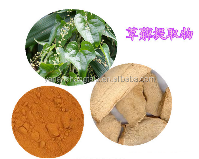 GMP factory supply Hot sale high quality Hypoglaucous Collett Yan Rhizome powder 10:1