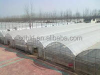 Hot sale Vegetable Greenhouse Covered by Plastic Film