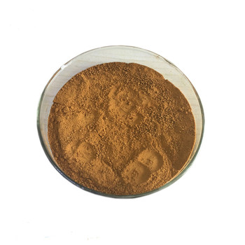 male health raw powder free sample for maca root extract