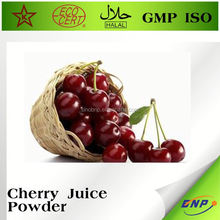 Freeze Dried West Indies Cherry Juice Powder