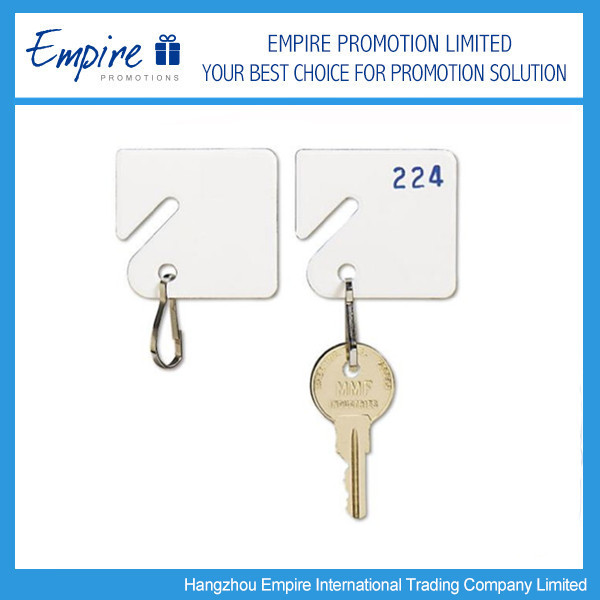 Custom Printing Promotional Blank Plastic Key Tags