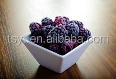 Frozen Blackberry Organic and Common Type For Choosing
