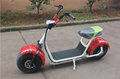 1000W60V Big Power Halley Electric Scooter YXEB-717S