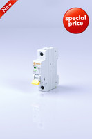 outdoor circuit breaker temperature controlled switch electric miniature circuit breaker 1pole 40a