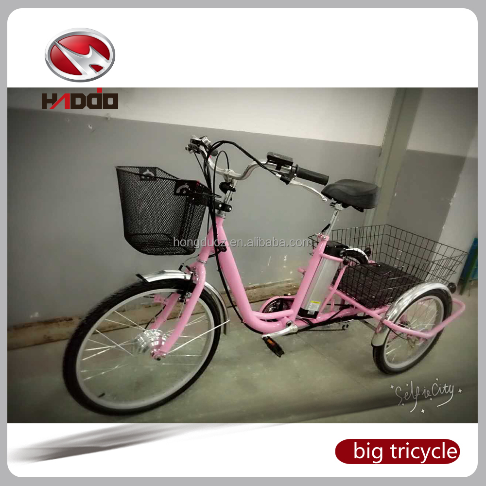 24'' handicapped electric bike 36V wholesale electric bicycles