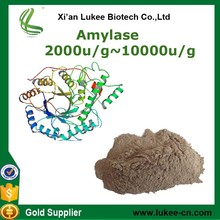 Supply the price of the enzyme alpha amylase enzyme/fungal alpha amylase cas9000-90-2