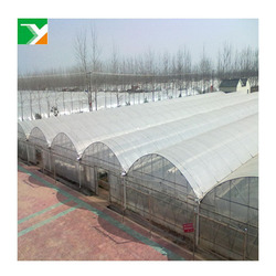 Agricultural High Tunnel Plastic Film Greenhouse Poly House For Sale