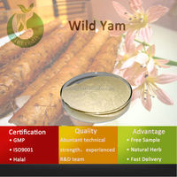 Professional Factory Low Price Wild Yam