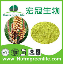 Manufacturer Supply 100% pure natural Pine Pollen for health food