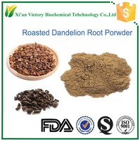 Roasted dandelion root extract powder in tea bag