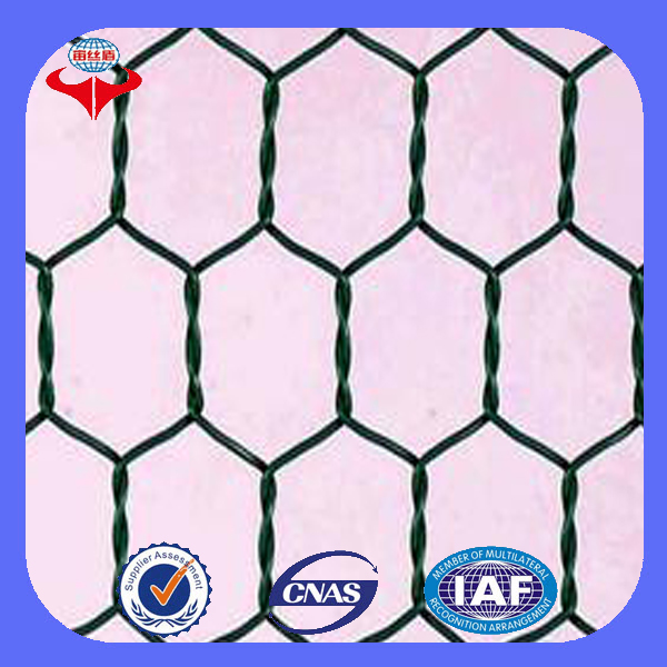 Anping Longyi factory lowes chicken wire mesh roll / hexagonal chicken wire mesh fence (ISO 9001 factory)