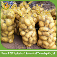 2016 potato onions price for sale in pakistan