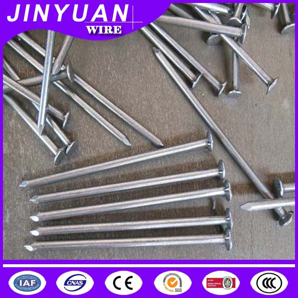high carbon iron wire nails ,common nail polished iron nails factory in Hebei