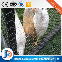 Decorative customized 1/4 inch galvanized chicken hexagonal wire mesh