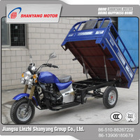 cargo auto rickshaw/Lifan water/air-cooling engine motorised tricycle made in China/cabin