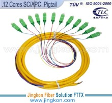 Fiber Optic Pigtail SC/APC-SM-0.9-12cores